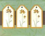 card sketchpic