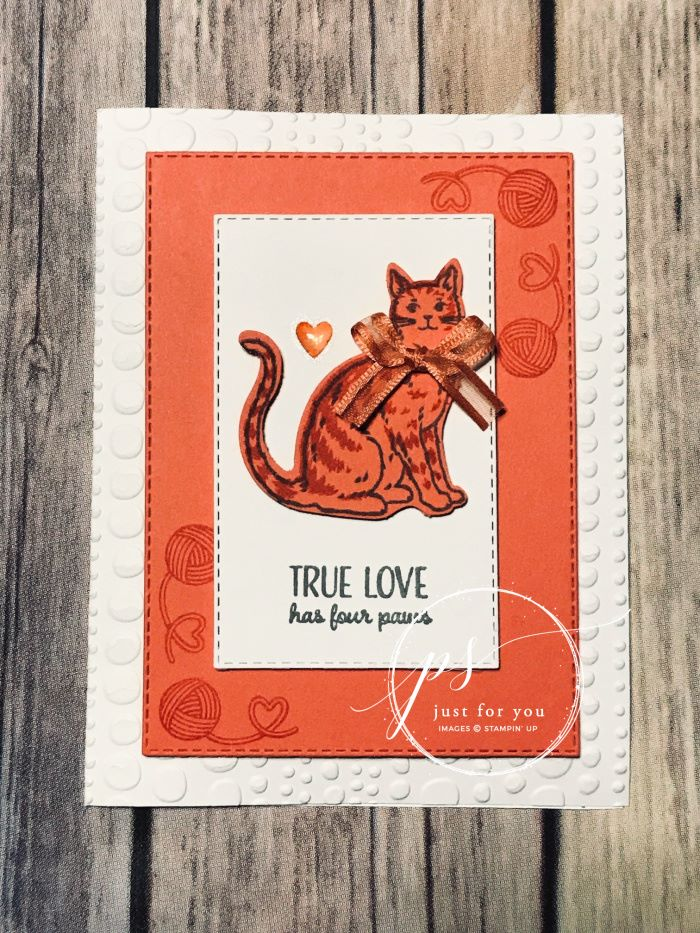 Stampin' Up! Nine Lives Stamp Set