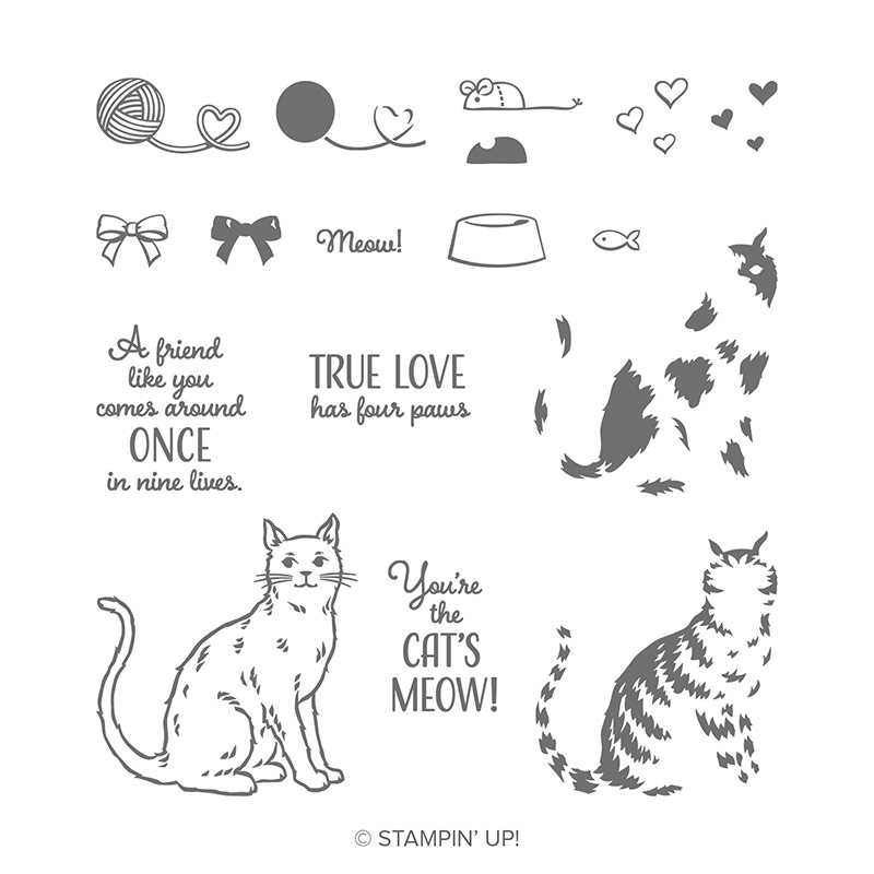 https://www.stampinup.com/ecweb/product/148703/nine-lives-photopolymer-stamp-set