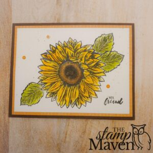 birthday card using celebrate sunflowers stamp set by stampin up
