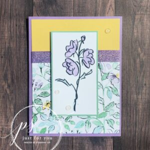 stampin up color and contour